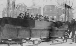 A horse drawn sleigh used for winter transportation